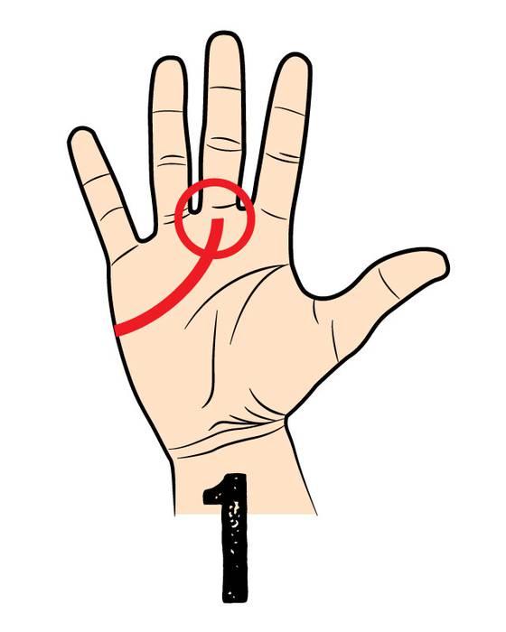 志の高いタイプ (ちょっとワガママ) 中指にかけてラインが伸びている人