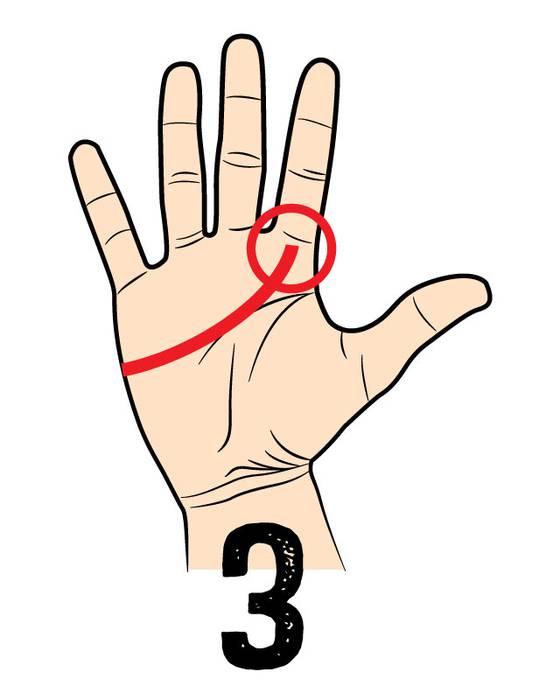 03. 自信家タイプ (独り身も気にしない) 人差し指に向かってラインが伸びている人