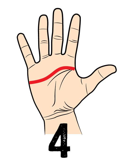04. 平和主義者タイプ (とにかく心が広い) 下に向かってラインが伸びている人