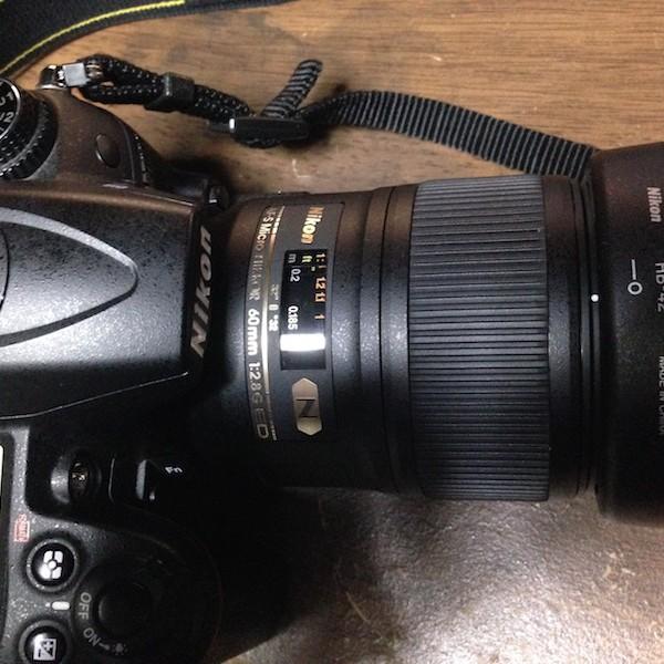 D7000+Micro 60mm f/2.8G