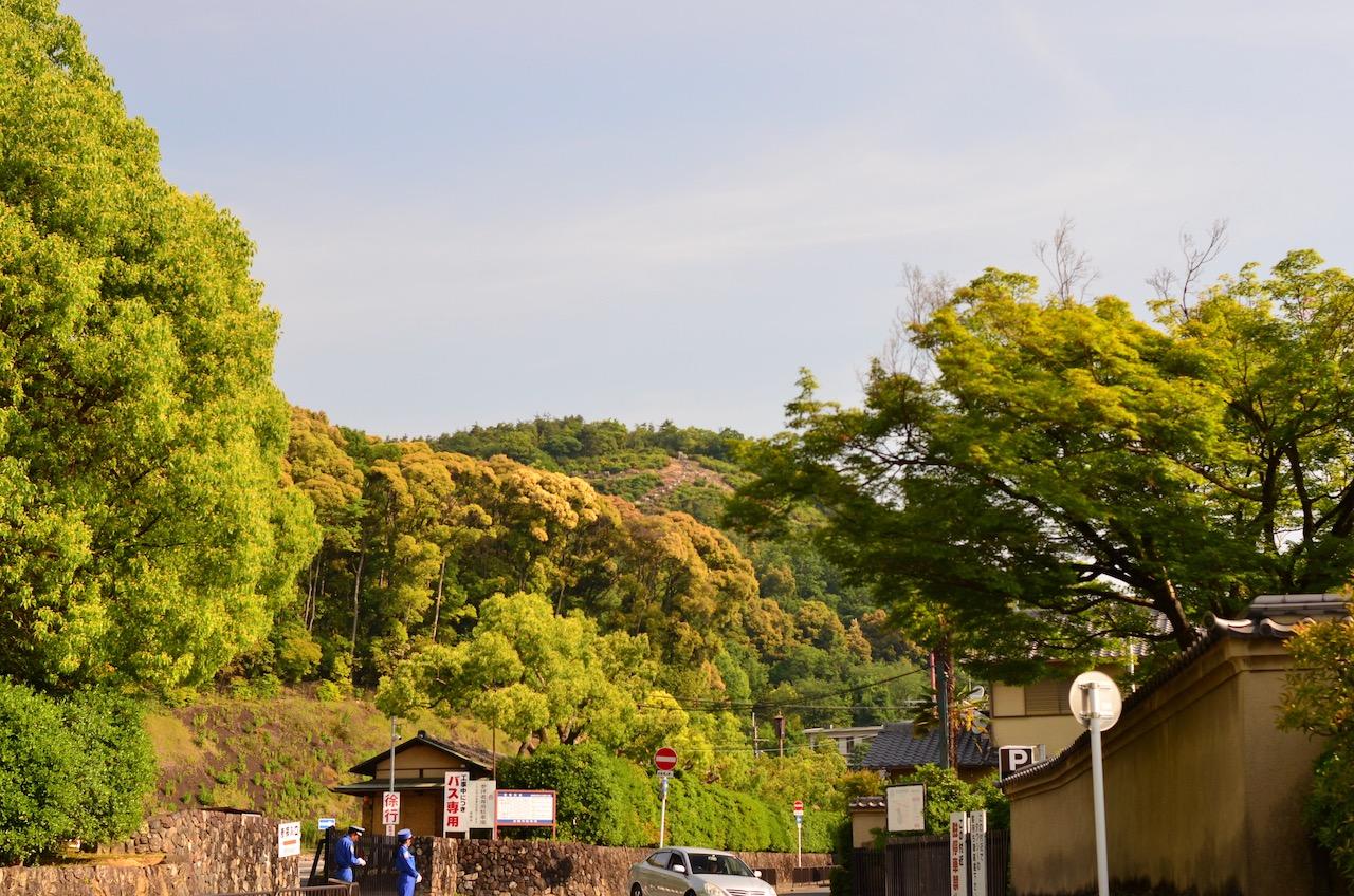 【2日目 京都編】50mm画角で見る京都、金閣寺・清水寺。そして、また凶だった。