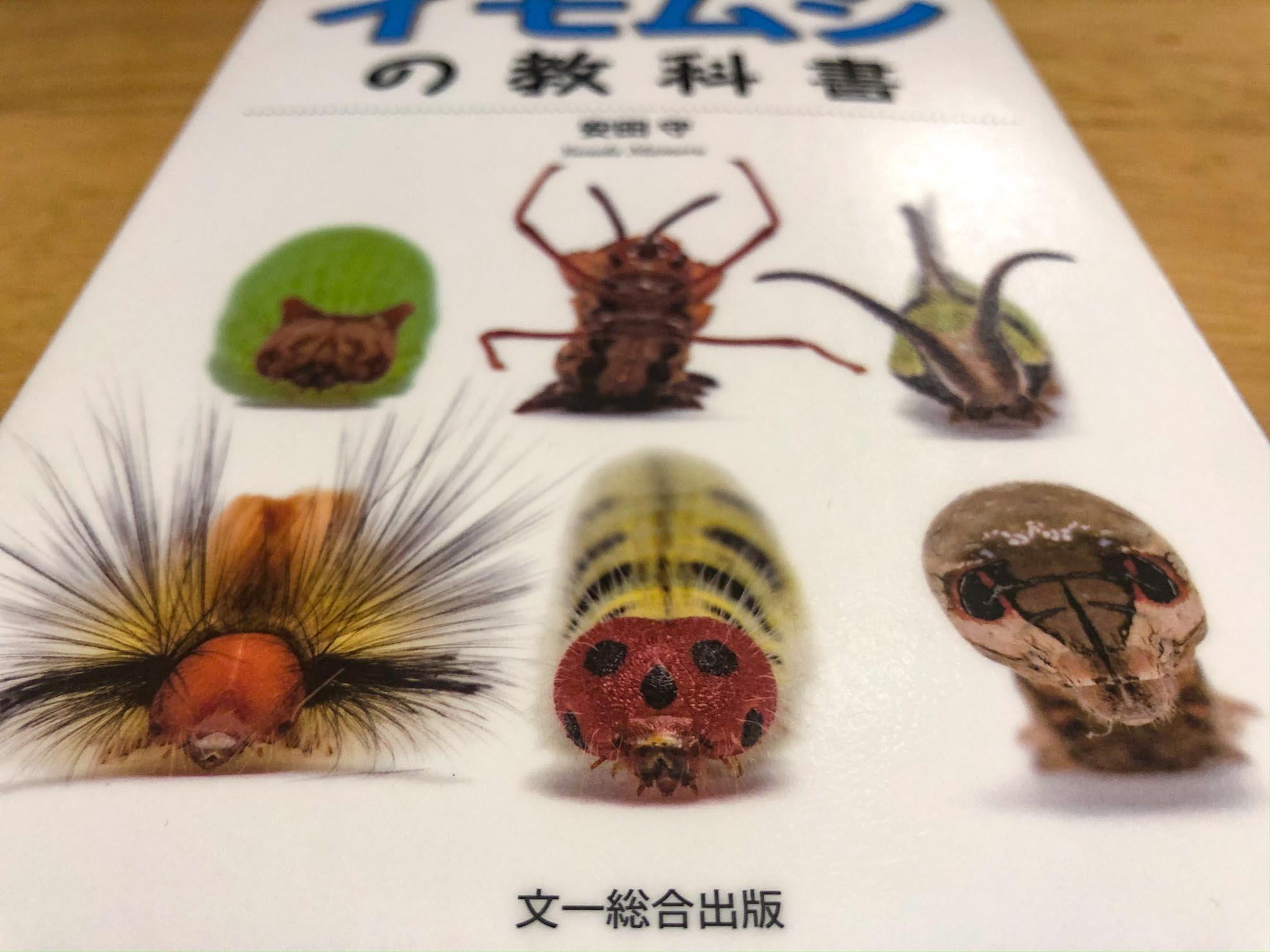 まとめ 『イモムシの教科書』が人の家の庭にさえ興味を持たせる!